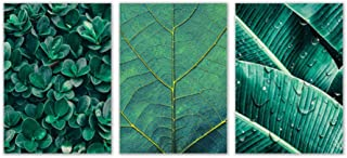 Kkglo 3Pcs Nordic Green Plant Leaf Wall Art Canvas Golden Veins Posters Prints Painting Wall Picture For Living Room Home ...