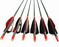 Jocoo 12Pack 30-inch Carbon Arrow with 4 Turkey Feathers Hunting//Targeting Arrow for Compound Recurve Longbow