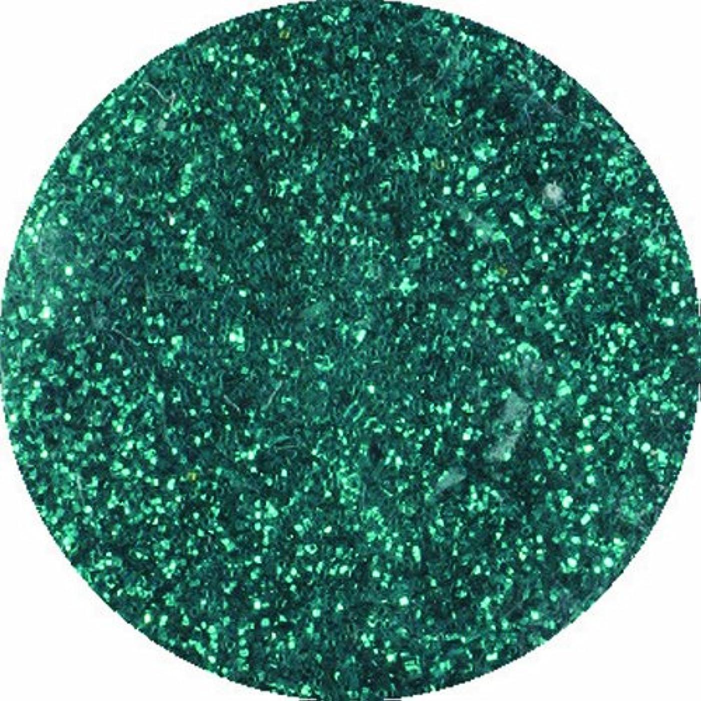 お地平線有効ビューティーネイラー ネイル用パウダー 黒崎えり子 ジュエリーコレクション ブルーグリーン0.05mm
