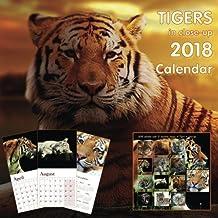 Tigers in close-up 2018 Calendar