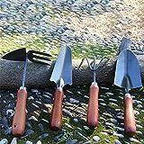 Conjunto de herramientas para equipos de jardinerí Herramientas de jardín Set 4pcs mango de madera del rastrillo de doble pala azada Ronda verduras plantación de flores de plantas de jardinería herram