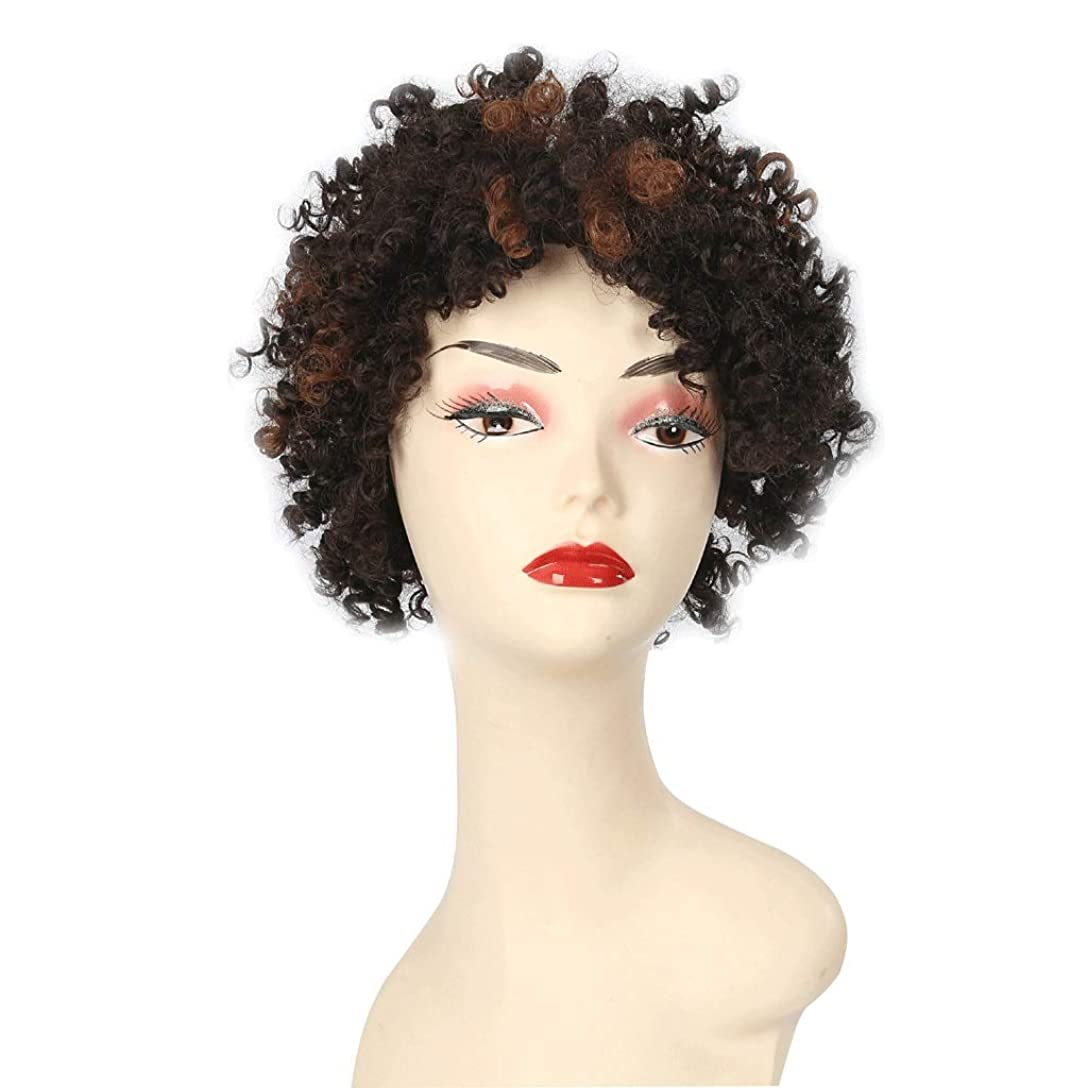 大気つま先ワイド黒人女性のためのアフロの短い巻き毛のかつら、女性のための自然な一見ファンシードレス&コスプレパーティー (Color : B)