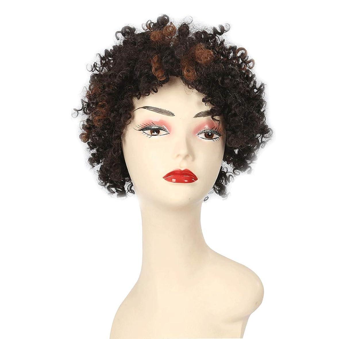 振幅うつスパン黒人女性のためのアフロの短い巻き毛のかつら、女性のための自然な一見ファンシードレス&コスプレパーティー (Color : B)