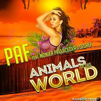 Animals of This World (feat. Monika Pavlackova, Seshep)