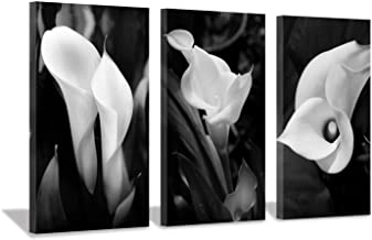 Floral Artwork Nature Flower Picture: Calla-Lily Print on Canvas Set for Wall Art