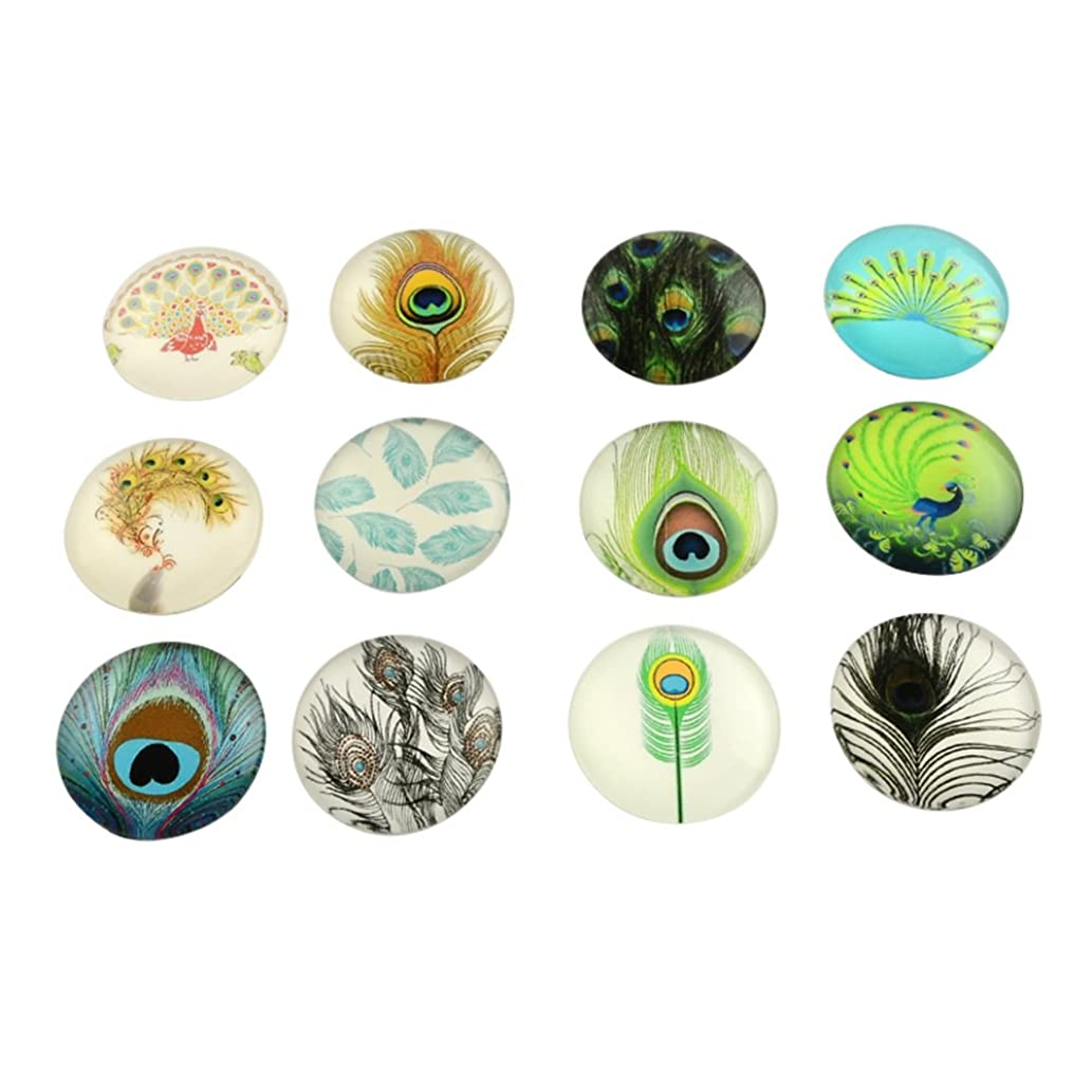 NBEADS 200PCS 12mm Random Mixed Color Feather Pattern Glass Dome Cabochons Half Round Cabochons Tiles, for Photo Pendant Craft Jewelry Making