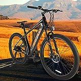 Bicicleta eléctrica Batería Extraíble 250 W Motor E-Bike MTB Pedal Assist con Instrumento LCD Central & Autonomía Buena