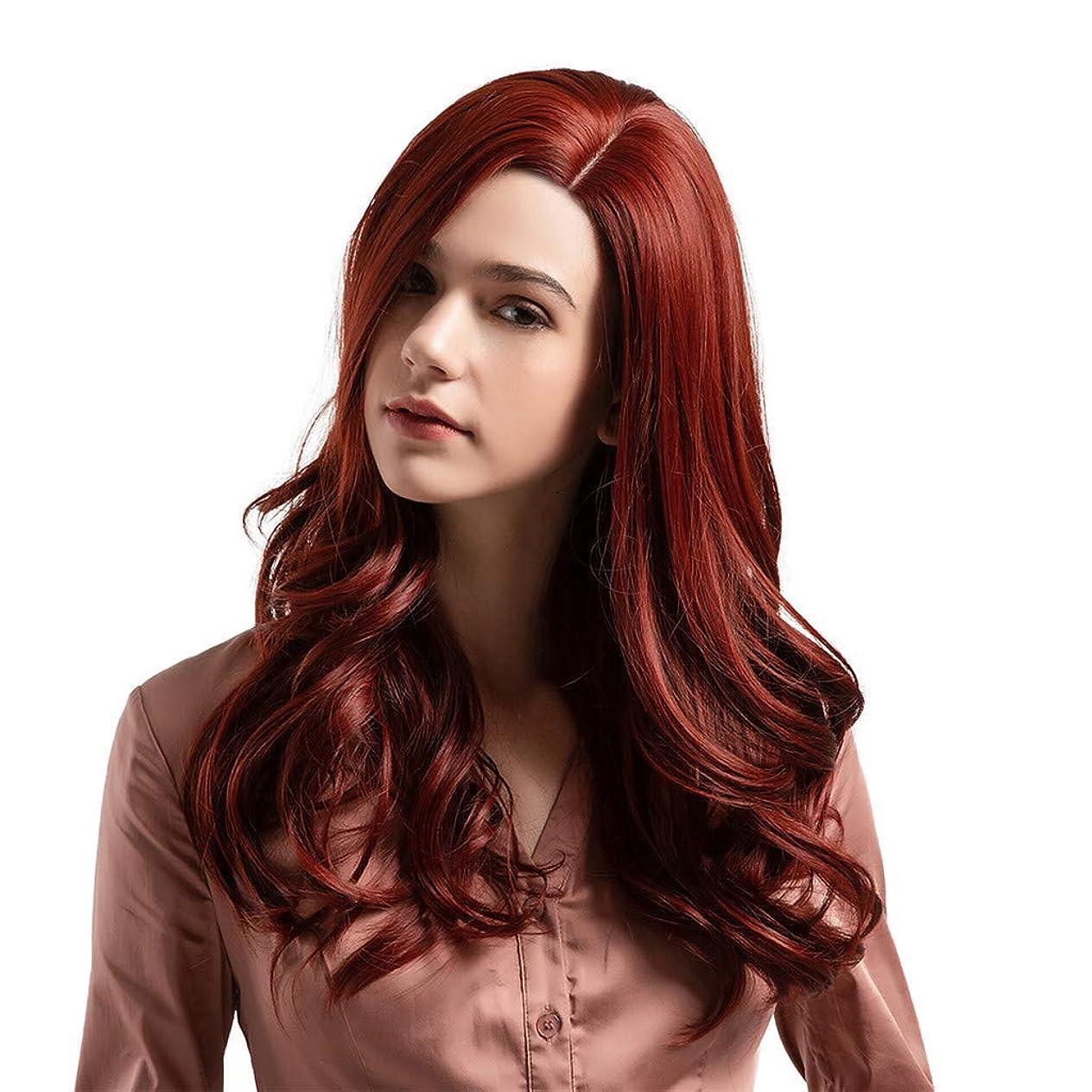 毛皮トチの実の木入るかつら赤の長い髪の巻き毛の自然なかつら高温シルクウィッグ24インチ