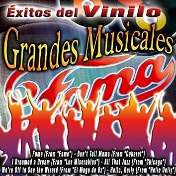 Éxitos Del Vinilo Grandes Musicales