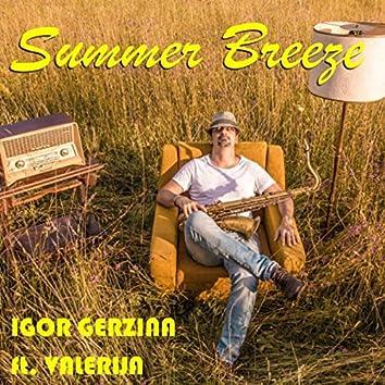 Summer Breeze (feat. Valerija)
