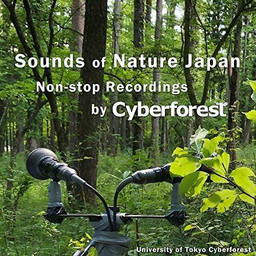 University of Tokyo Cyberforest