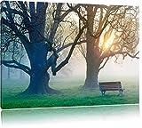 Baum und Bank im Nebel, Bild auf Leinwand, XXL riesige