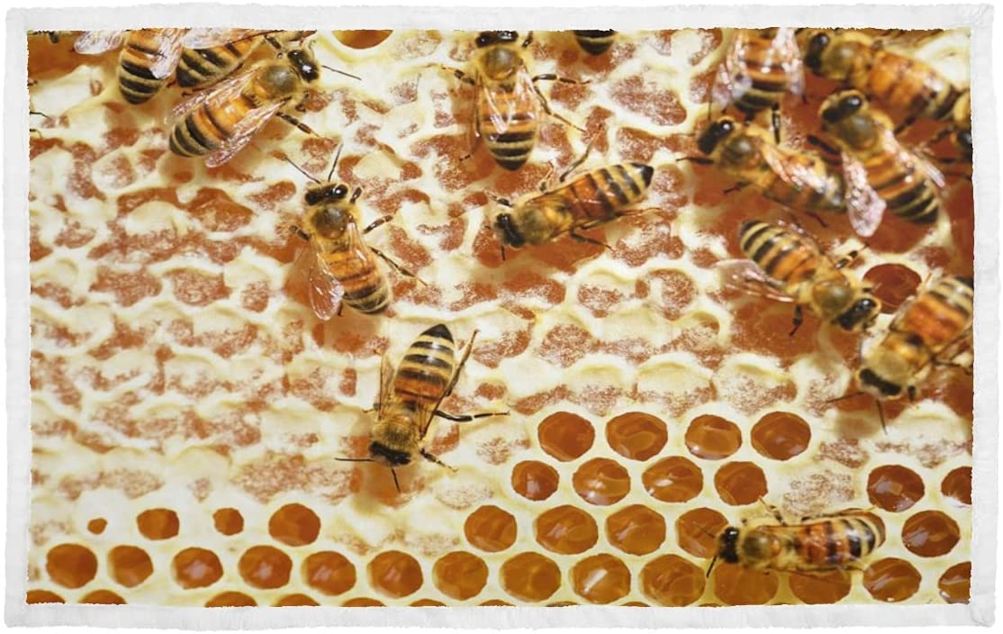 Over item handling ☆ Kitten Blankets Bees Honey Beehive Combs Limited time cheap sale Bl Honeycomb