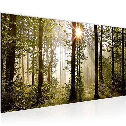 Bilder Wald Sonne Wandbild 100 x 40 cm Vlies - Leinwand Bild XXL Format Wandbilder Wohnung Deko Kunstdrucke - MADE IN GERMANY - Fertig zum Aufhängen 601712a
