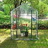 WMQ Mini casa Verde sin Llamar Transparente con Ventana y Ancla, casa Caliente del jardín de la Planta