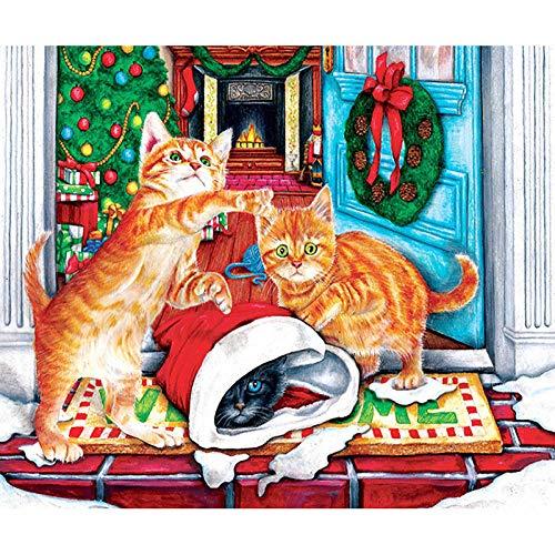 Lifang sister 5D diamantschilderij om zelf te maken, vierkante kunst, volle diamanten, kerstmuts, kat, 30 x 20 cm, borduurwerk om op te hangen, kerstcadeau, pasta met strass-steentjes