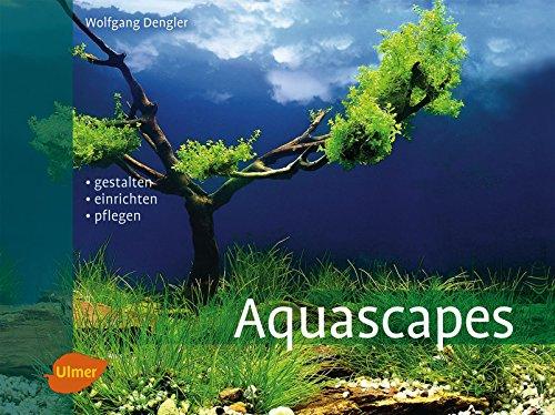 Aquascapes: Gestalten, einrichten, pflegen