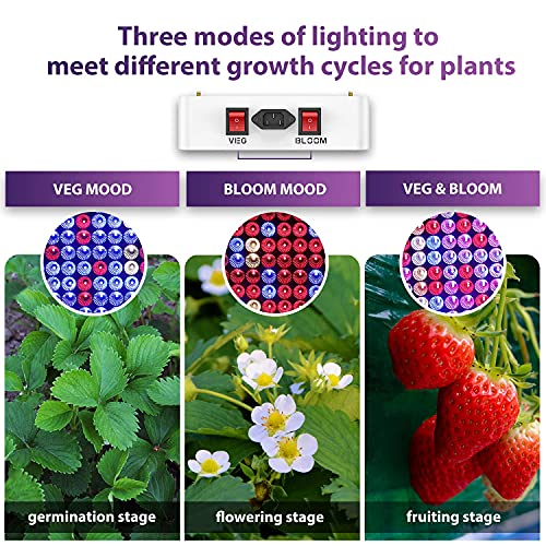 different modes of light intensity