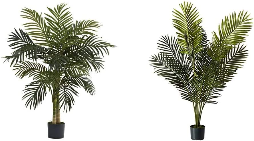 Nearly lowest price Natural 5357 4ft. Golden Cane Tree 5ft. safety Palm Para Green