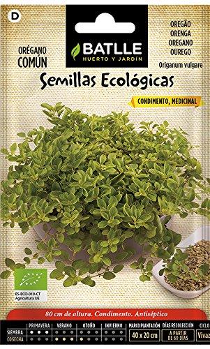 Bio Samen - Oregano (750 Samen - Bio)