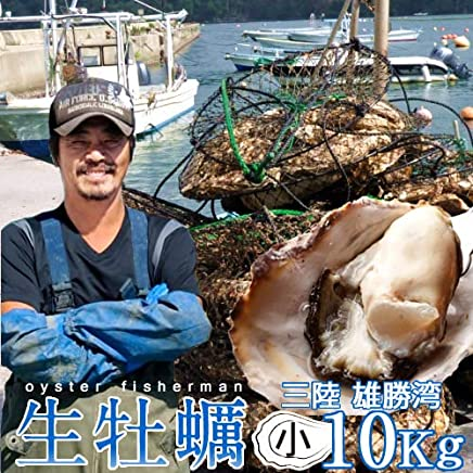 生牡蠣 殻付き 10kg 小 生食用 宮城県産 漁師直送 格安生牡蠣お取り寄せ