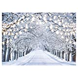 Funnytree 7x5FT Glitter Winter Forest Photography Backdrop Sparkle Snow Natural Scenery Landscape Tree Path Party Banner Photo Backgound Decor Photo Booth