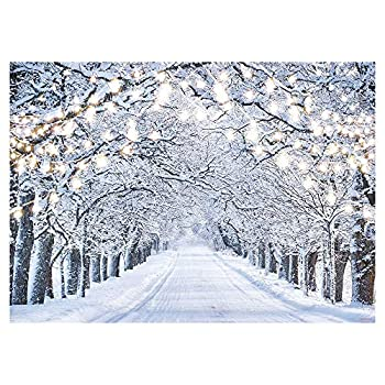 Best winter photography backdrop Reviews