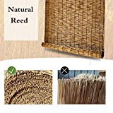 MZSH Bamboo Blinds for Windows and Doors, Backlit Roller Shade/Blind,Light Filtering Roll Up Shades,Privacy Window coverings,Espresso Reed,for Deck, Pergola, Gazebo, Back Yard