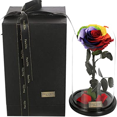 d46b6149a Amazon.com  Para Ella Preserved Fresh Rose Flower Head Covered by ...