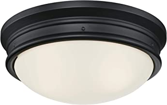 Westinghouse Lighting 6324100 Meadowbrook Two-Light Indoor Flush-Mount Ceiling Fixture,..