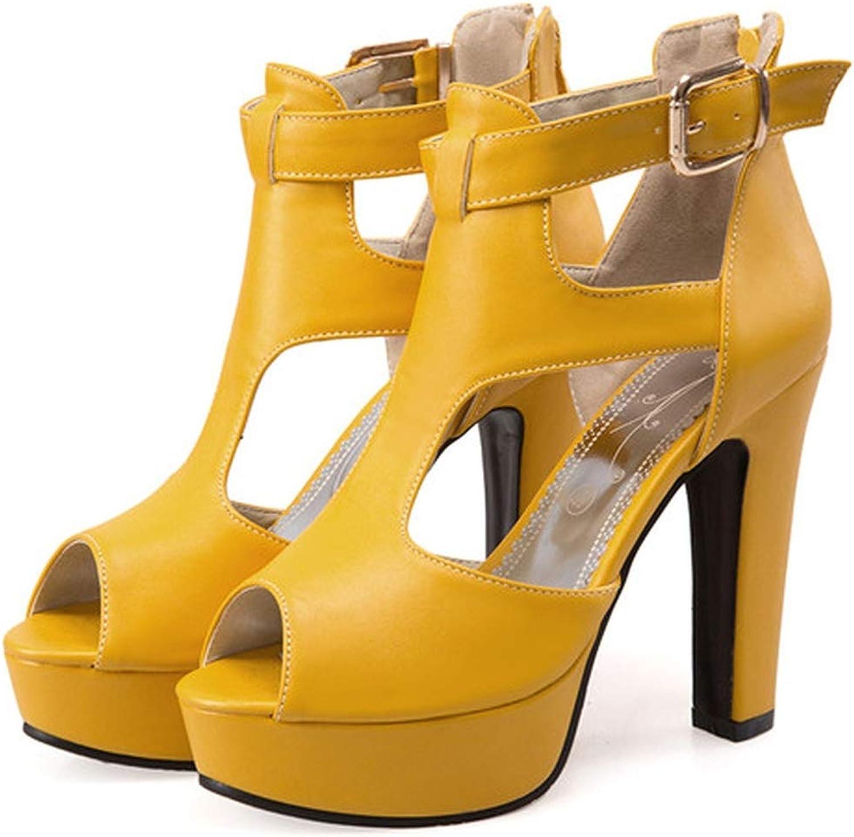 YuJi Gladiator shoes High Heel Sandals Peep Toe T-Strap Platform Spike Heels Zip Rome shoes