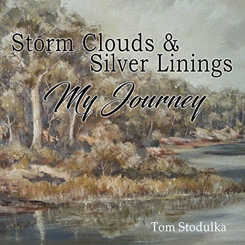 Storm Clouds and Silver Linings cover art