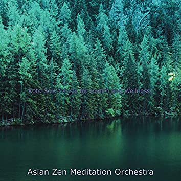 Koto Solo (Music for Health and Wellness)