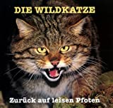 Die Wildkatze: Zurück auf leisen Pfoten