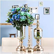 Flower Bottle Covered with Dried Flowers Transparent Heavy Glass Vase Decoration Home Set (1 Set 2 Pieces)