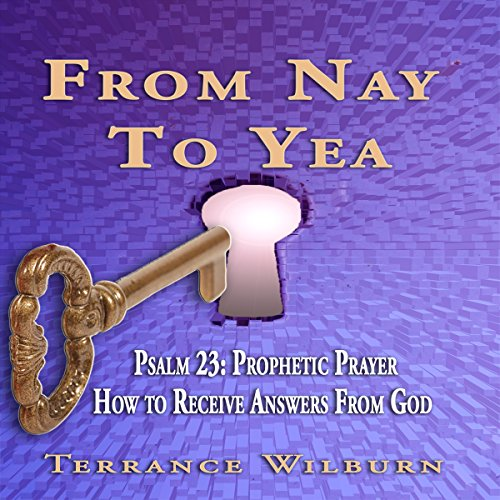 From Nay to Yea audiobook cover art