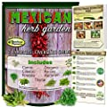 Mexican Herb Garden Seed Collection- Culinary Herbs. 7 Authentic Varieties: Cumin, Cilantro, Epazote, Oregano, Parsley, Marjoram, Thyme Free Online Organic Growing Guide