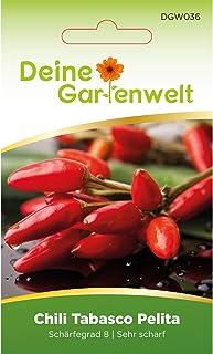 Chili Tabasco Pelita | Samen für scharfe Chilis | Chilisamen | Tabascosamen