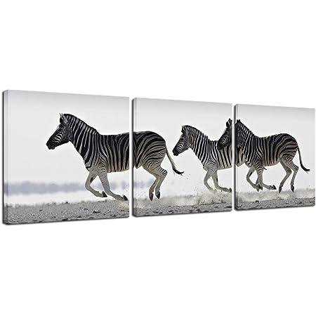 Animal Zebra Stripes Bw 12X16 Inch Framed Art Print