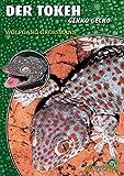 Der Tokeh: Gekko gecko (Art für Art: Terraristik)