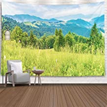 ROOLAYS Decorative Wall Decor, Home Art Decor Panorama of Beautiful Grassy Meadow in Mountains Sunrise Spruce on Rolling Hills 80X60 Inches for Living Room Dorm Background Tapestries