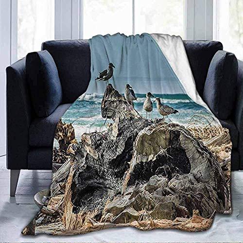 Leisure-Time Flanella Leggera e soffice, Coperte morbide, legni, Una zattera di legni, sulla Costa, con gabbiani ondulati