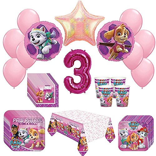 Top skye paw patrol party supplies for 2021