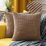 MIULEE 2er Set Granulat Kissenbezug Ananas Weiches Massiv Dekorativen Quadratisch Überwurf Kissenbezüge Kissen für Sofa Schlafzimmer Auto 16'x16', 40 x 40 cm Braun