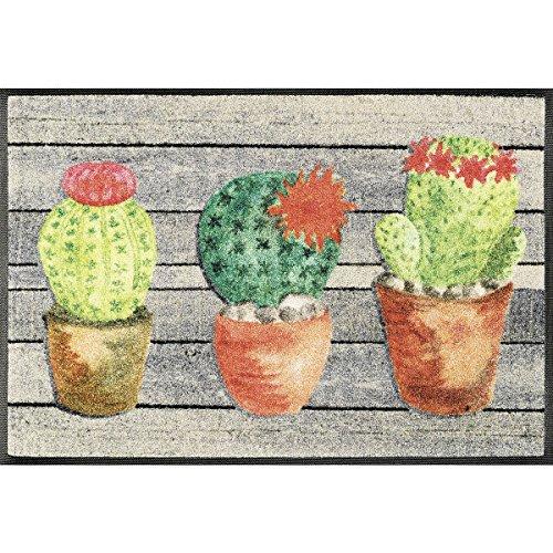 Wash+Dry Jardin de Cactus Tapis, Surface en Polyamide, Coloré, 75 x 50 cm