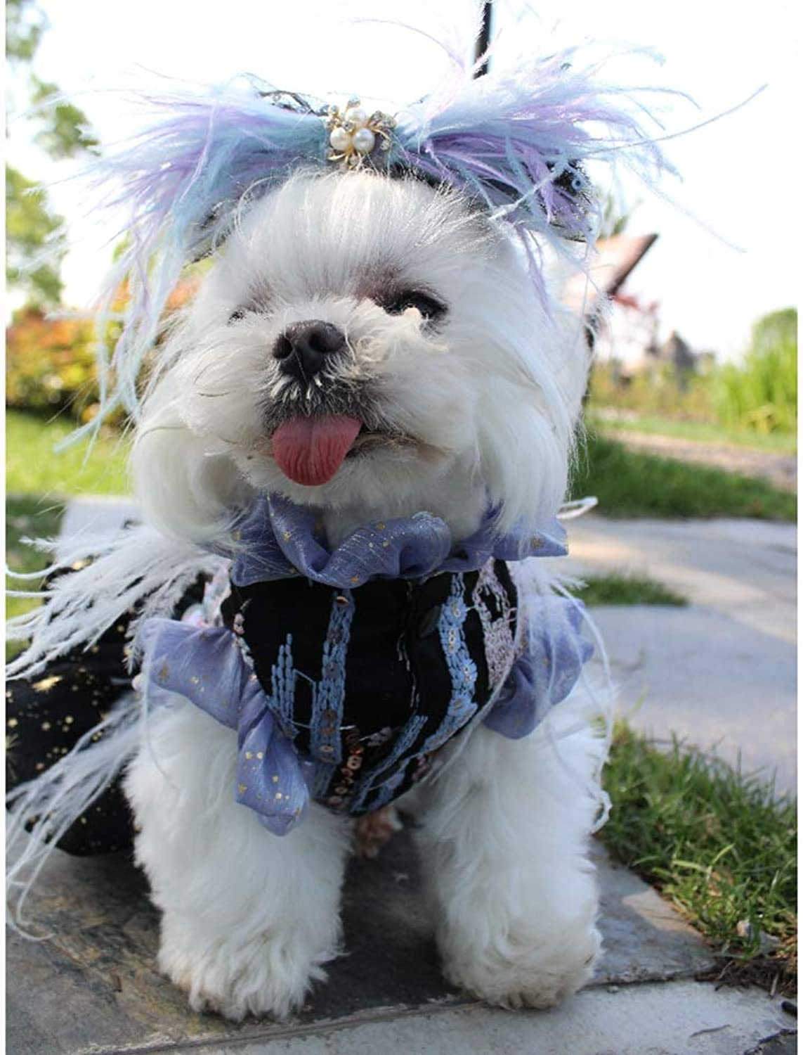 Pet Wedding Dress, Pet Clothes Tutu Shirts ThreeDimensional Flower Decoration Suitable for Wedding Photography Holiday Party Birthday Party,L