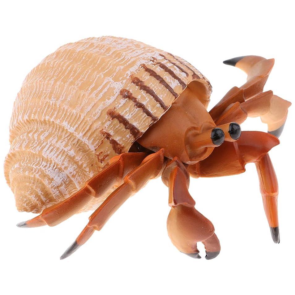 破壊する創造紳士気取りの、きざな動物モデル プラスチック フィギュア 家の装飾 装飾品 置物 全12種類 - ヤドカリ
