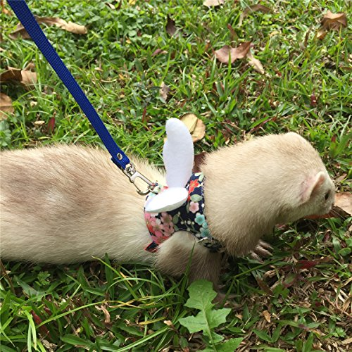 Ferret Harness and Leash Adjustable, Blue Sakura Cotton Cloth Ferret Walking Vest, Soft and Breathable Ferret Lead Leash with Angel Wings and Safe Bell