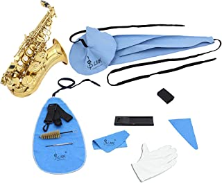 10-in-1 Saxophone Cleaning Kit Sax Clean Tools Saxophone Care Maintenance Set Includes Cleaning Cloth, Mouthpiece Brush, Mini Clarinet Screwdriver, Neck Strap,Reed Case,Thumb Rest Cushion,Gloves