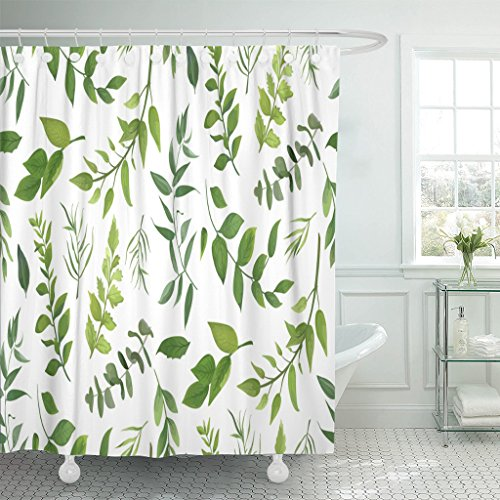 Emvency Shower Curtain Eucalyptus Palm Fern Different Tree Foliage Natural Branches Green Leaves Herbs Tropical Plant Waterproof Polyester Fabric 72 x 72 inches Set with Hooks